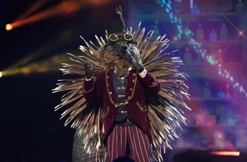Image result for hedgehog the masked singer